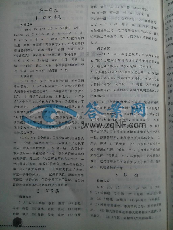 同步练习册八年级语文上册人教版答案